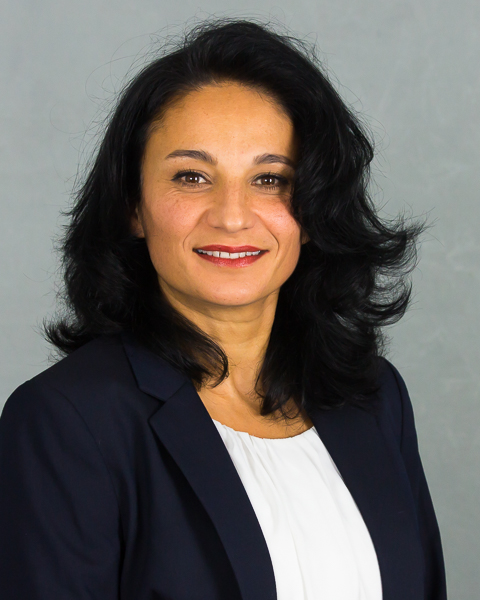 Atousa Schneider